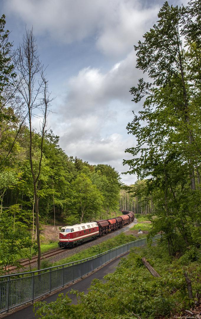 Reichsbahndiesel in der Hainleite I
