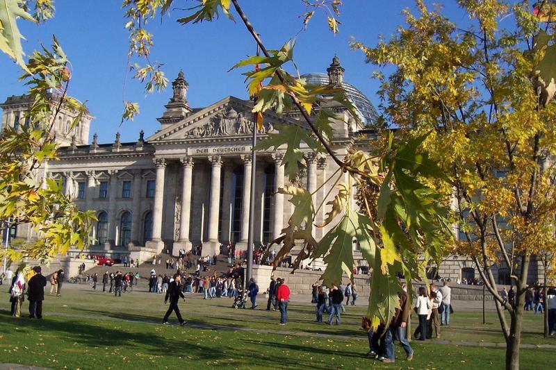 Reichstag durch Baumgeäst