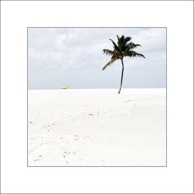 Reif für die Insel ............... !!!