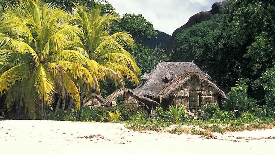 Reif für die Insel III