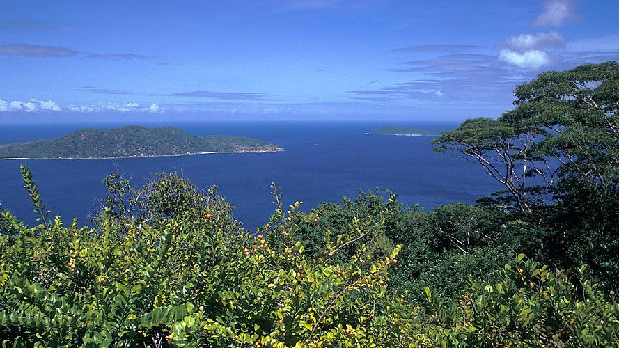 Reif für die Insel V