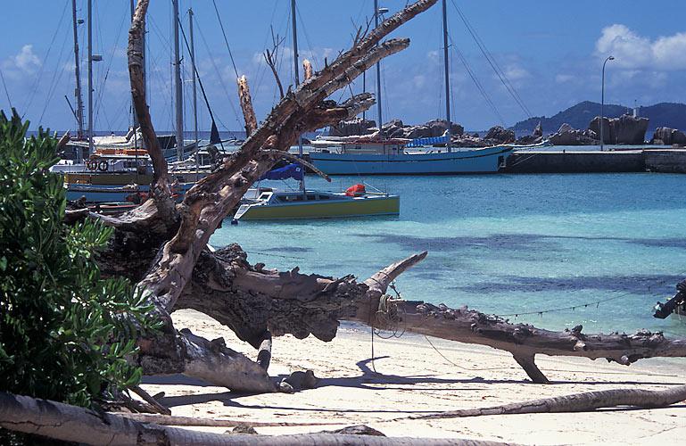 Reif für die Insel VIII