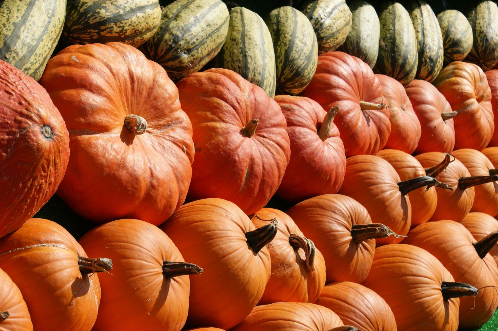 Reife Früchte im Herbst