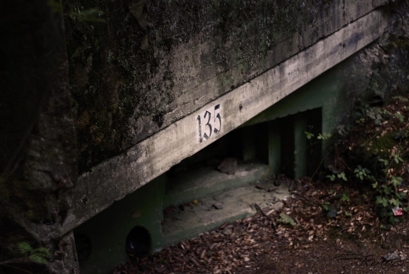 Reise in die Vergangenheit... Nr 135