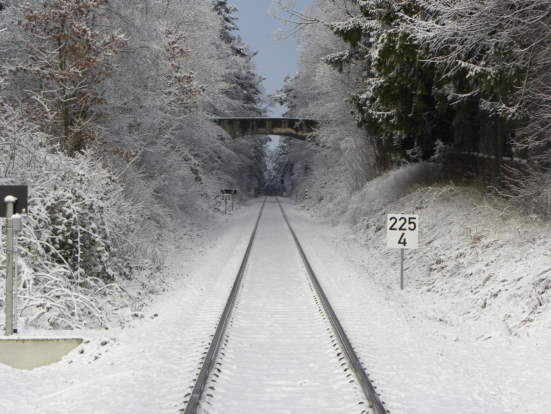 Reise in die Winterwelt....