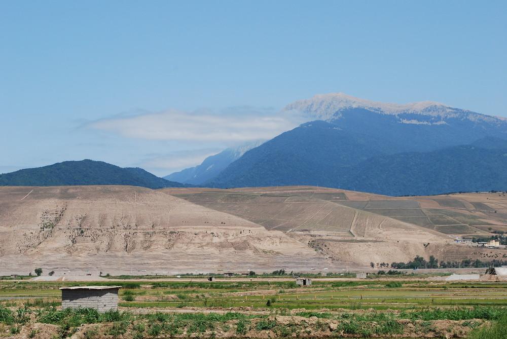 Reisfelder am Fusse des Elburs-Gebirge