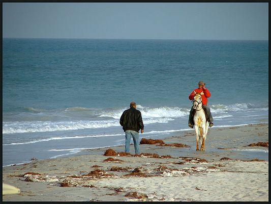 Reiter am Strand in Tunesiens Abendsonne