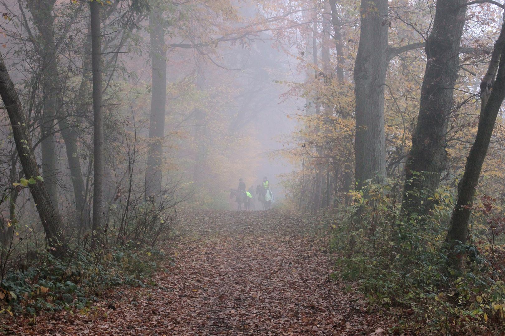 Reiter im Herbstdunst