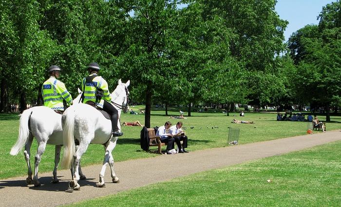 Reiter im Park