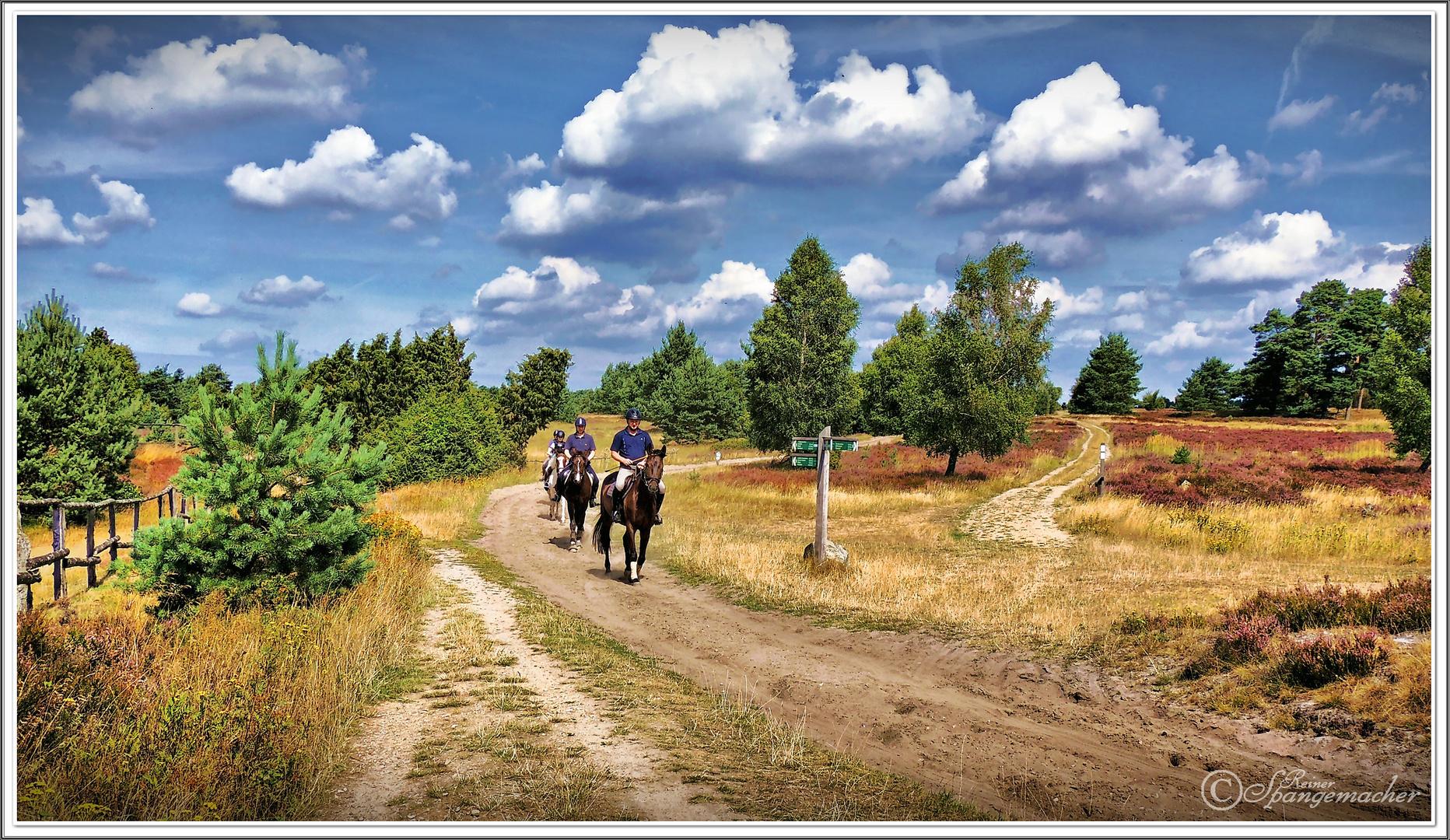 Reiter im Radenbachtal