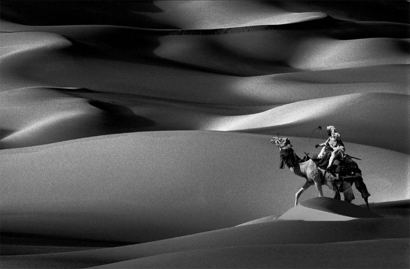 Reiter in Dünen