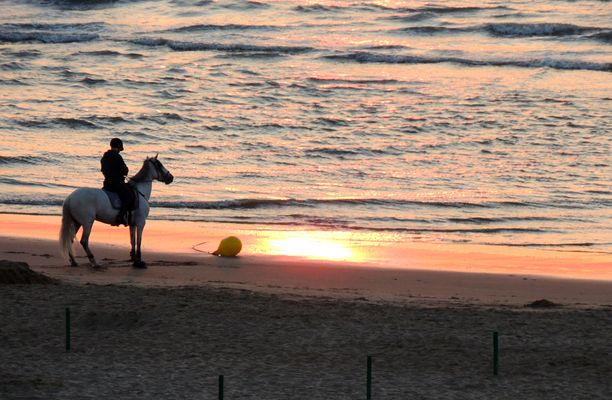 Reiter und Meer