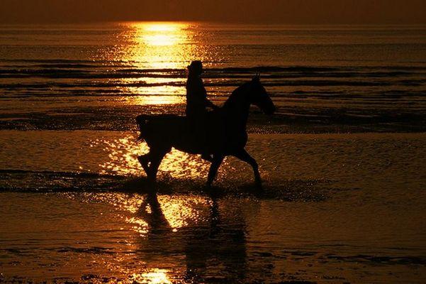 Reiterin am Strand