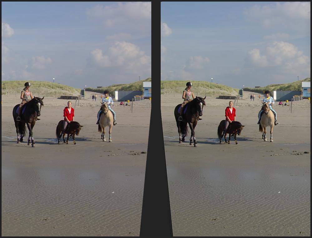 Reiterinnen [3D]