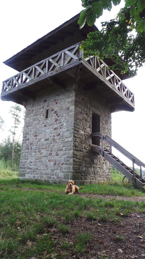 Rekonstruierter Limes-Wachturm auf dem Heidenbuckel