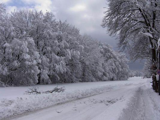Rekord Schneefall im März