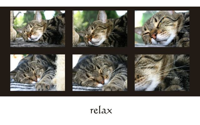. . . relax . . .