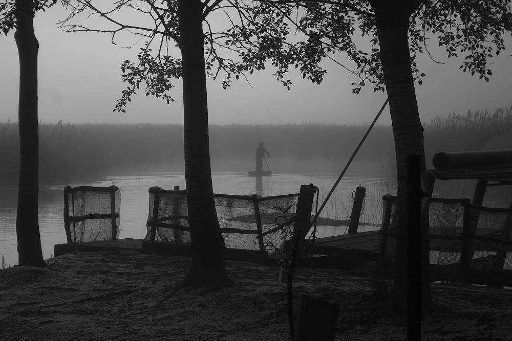 Remando nella nebbia