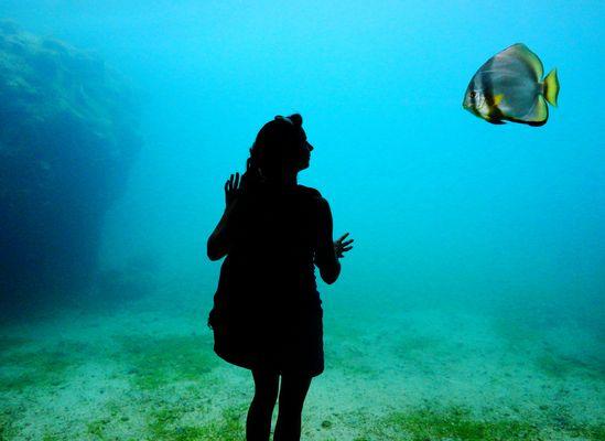 Rencontre avec un poisson