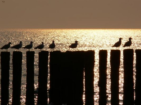 meer & strand bilder & fotos, Innenarchitektur ideen