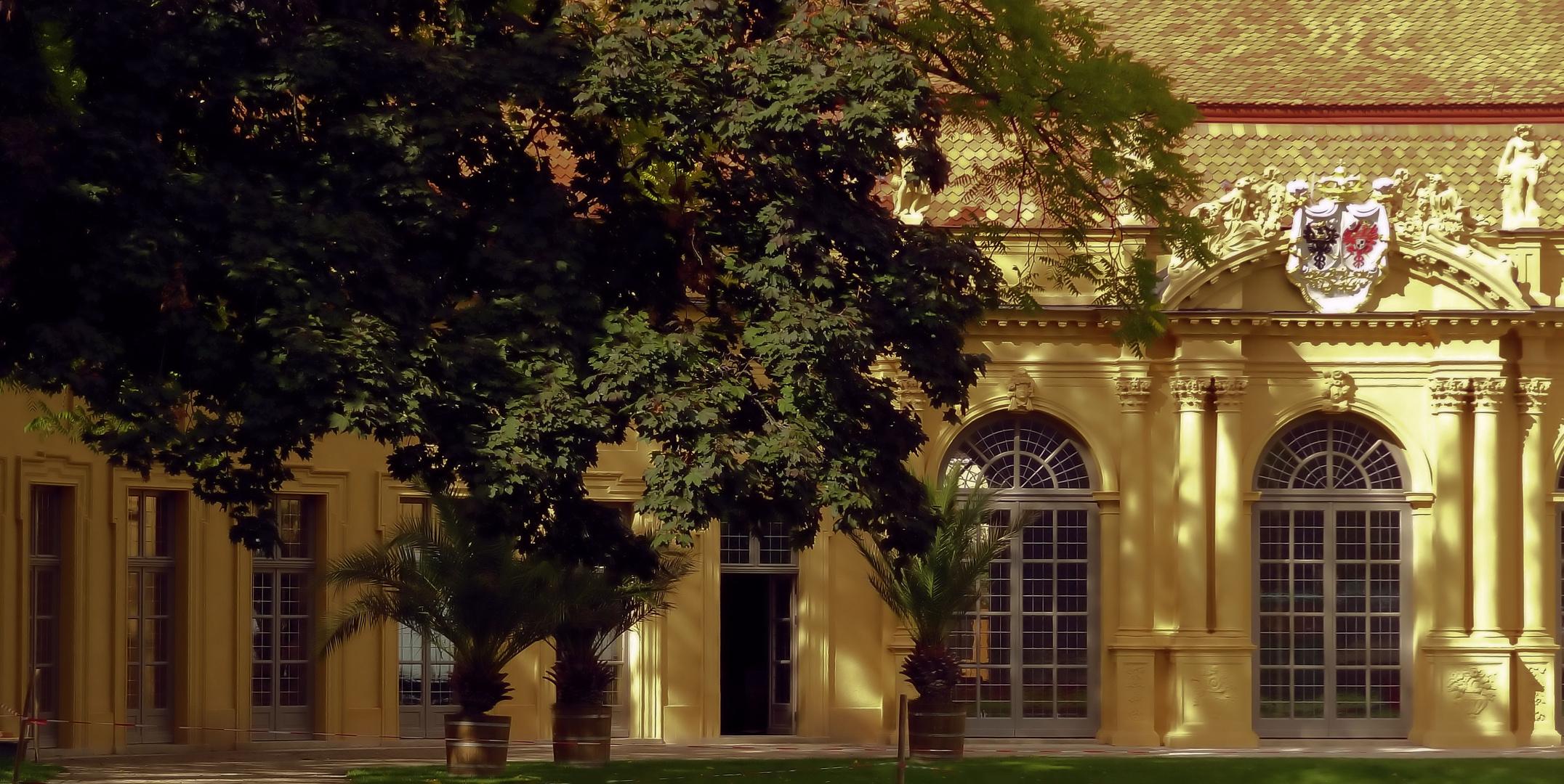 renovierte orangerie im erlanger schlossgarten 2