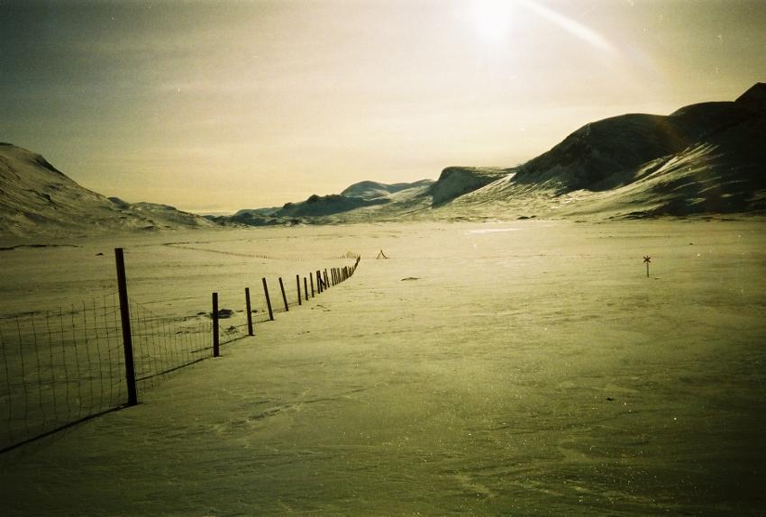 Rentierzaun bei Alesjaure, Lappland