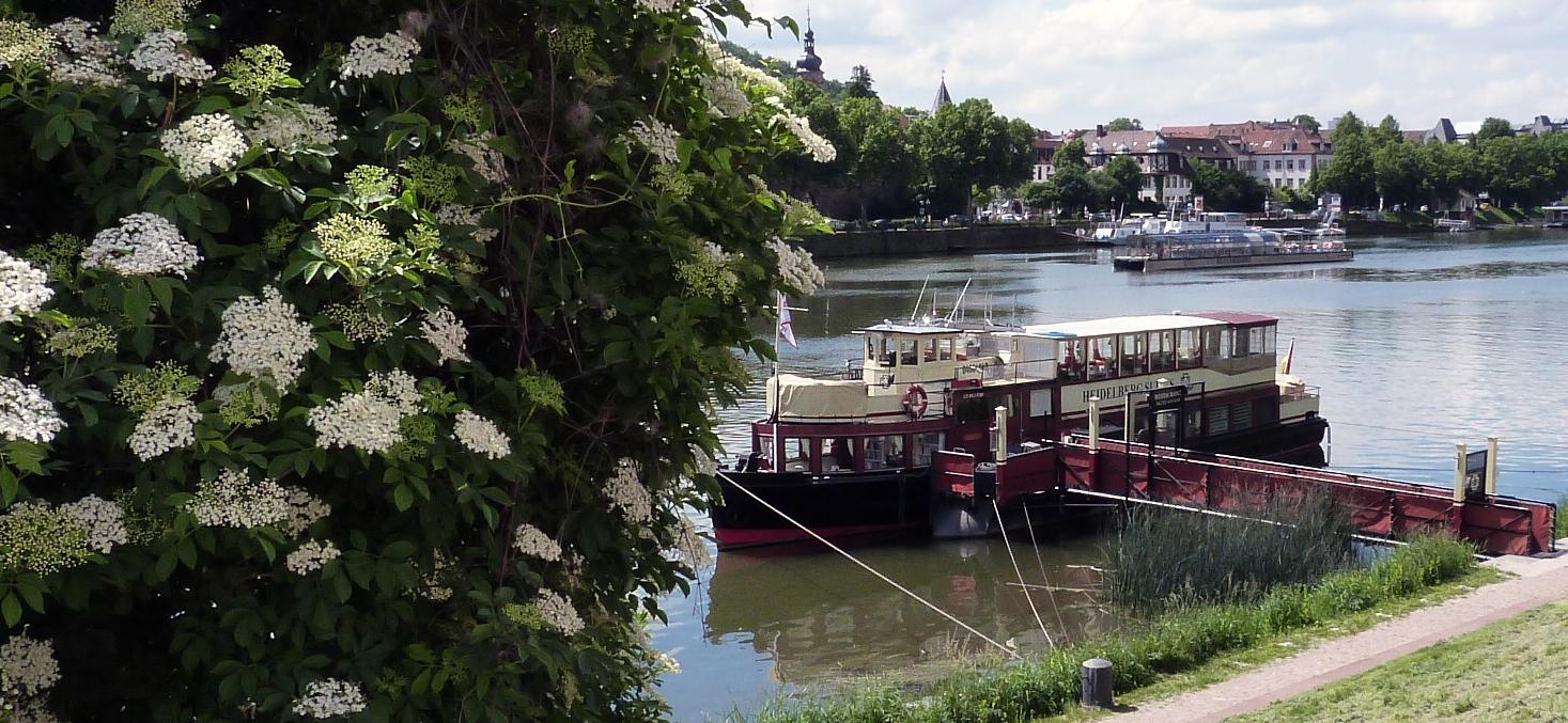 Restaurant auf dem Fluß.