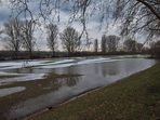 Reste vom Hochwasser am Rhein