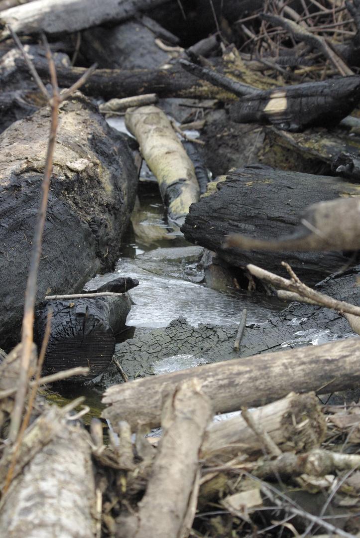 restes de glace emprisonne restes de feu