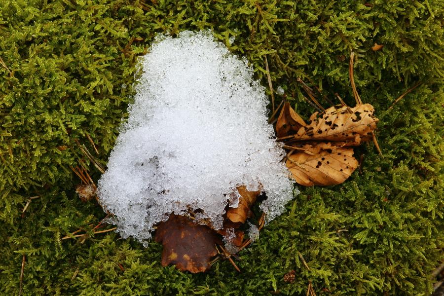 Restschnee schmilzt in der Frühlingssonne