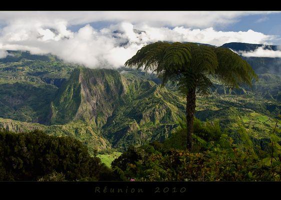 Réunion 10