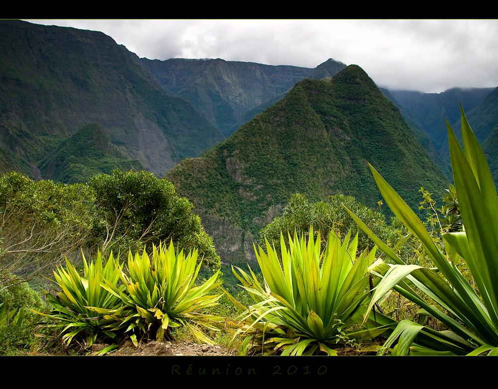 Réunion 13