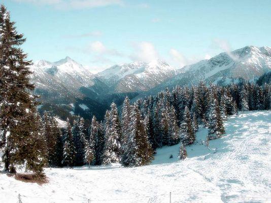 Reuttener Hütte (Tirol)