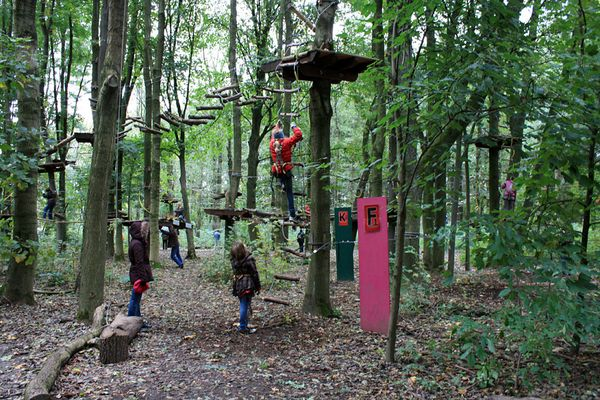 Revierpark Wischlingen in Dortmund #5 -Tree2Tree