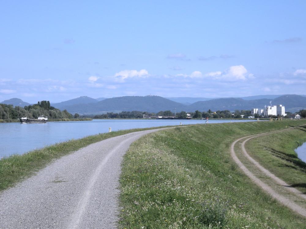 Rhein bei Greffern/Rheinmünster