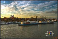 Rhein bei Speyer