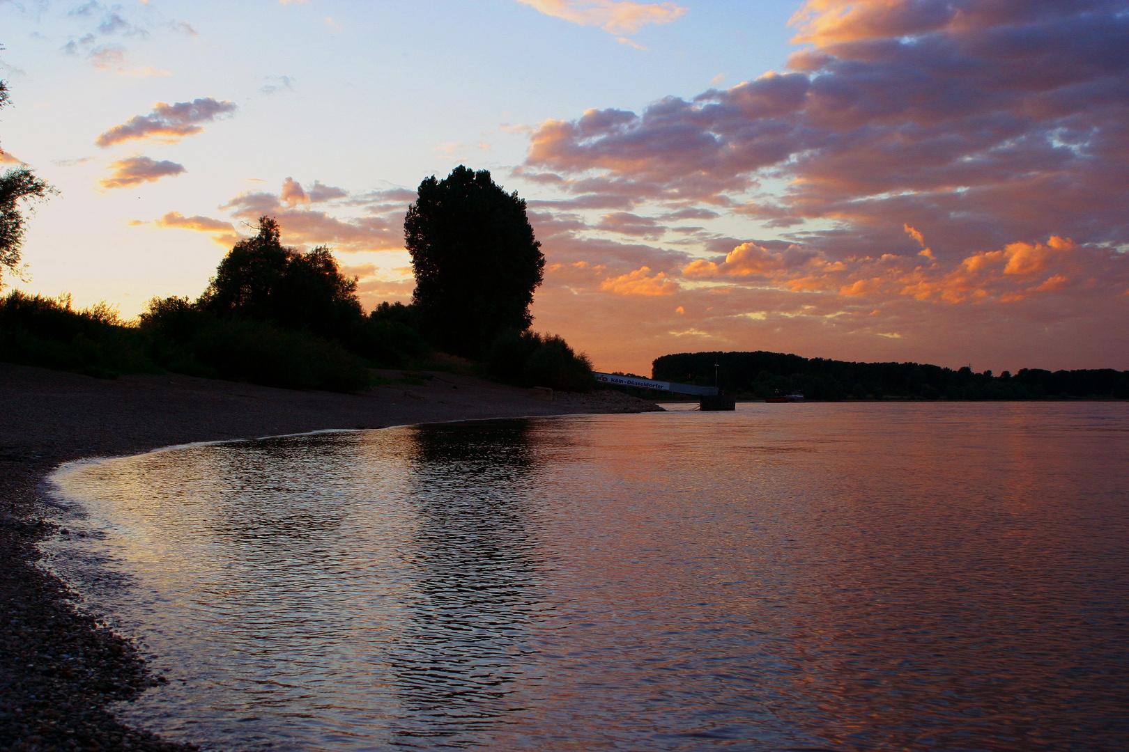 Rhein bei Zoons