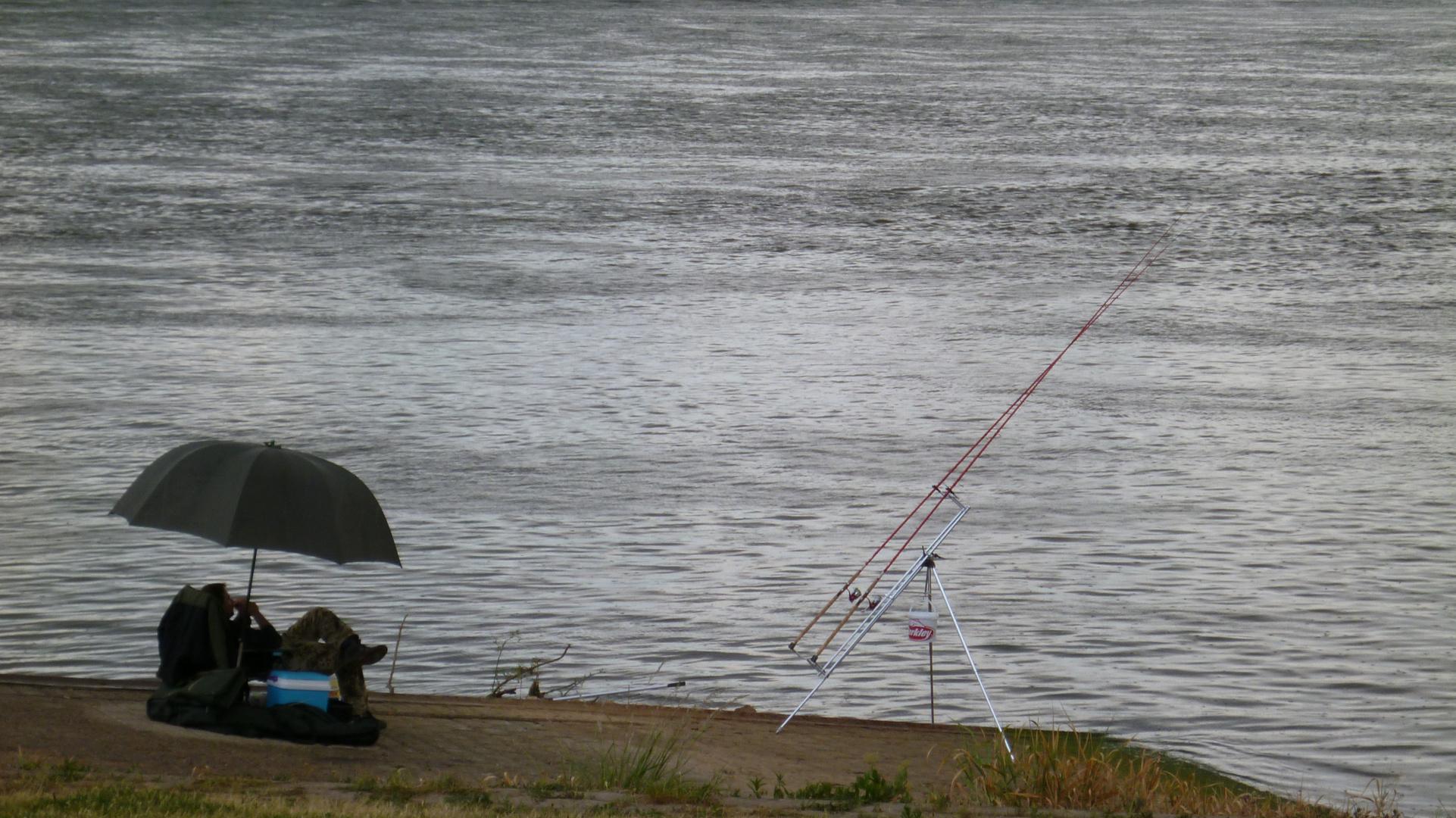 Rhein im Regen