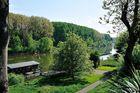 Rhein in Hersel