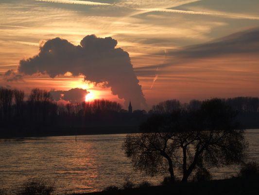 Rhein in Monehim am Rhein