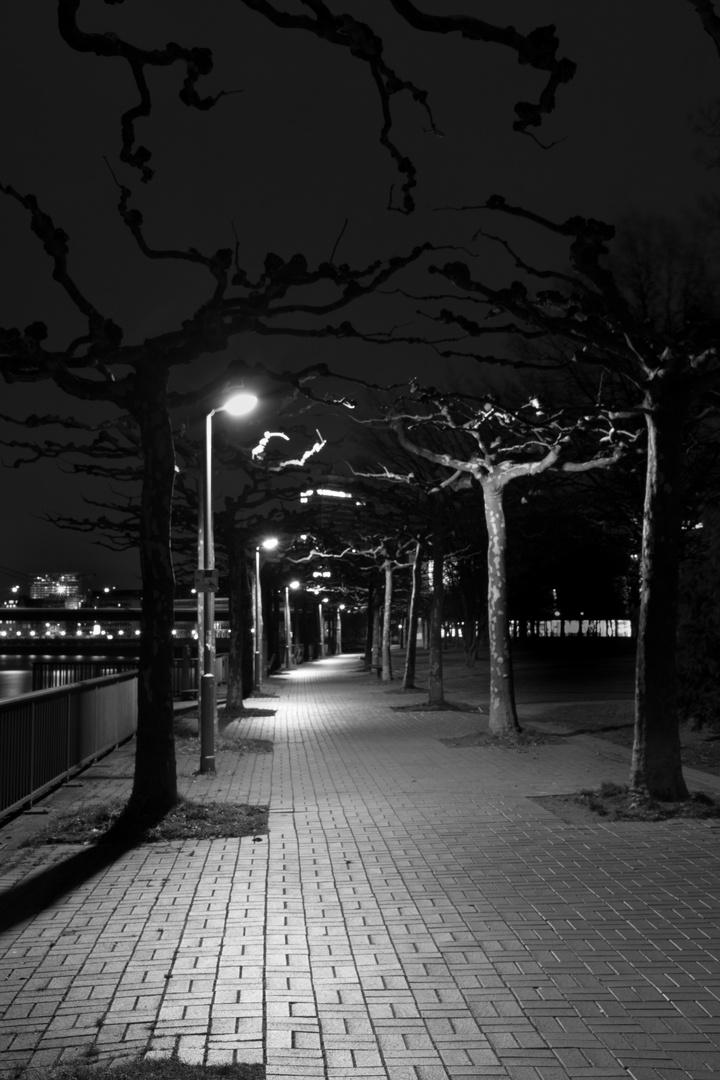 Rhein Promenade