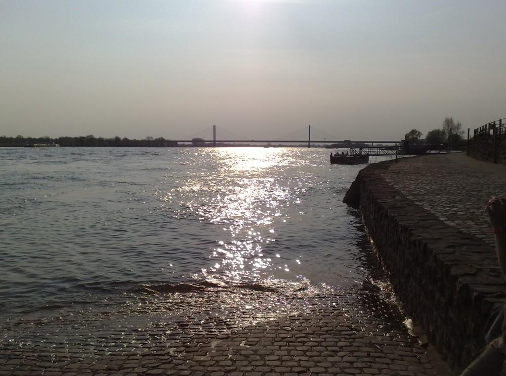 Rhein und Rheinbrücke bei Rees