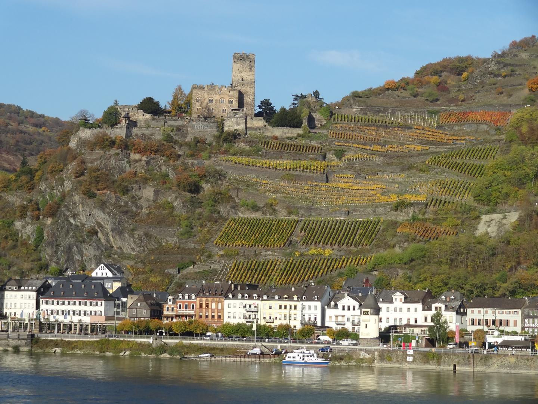 Rhein-Wein