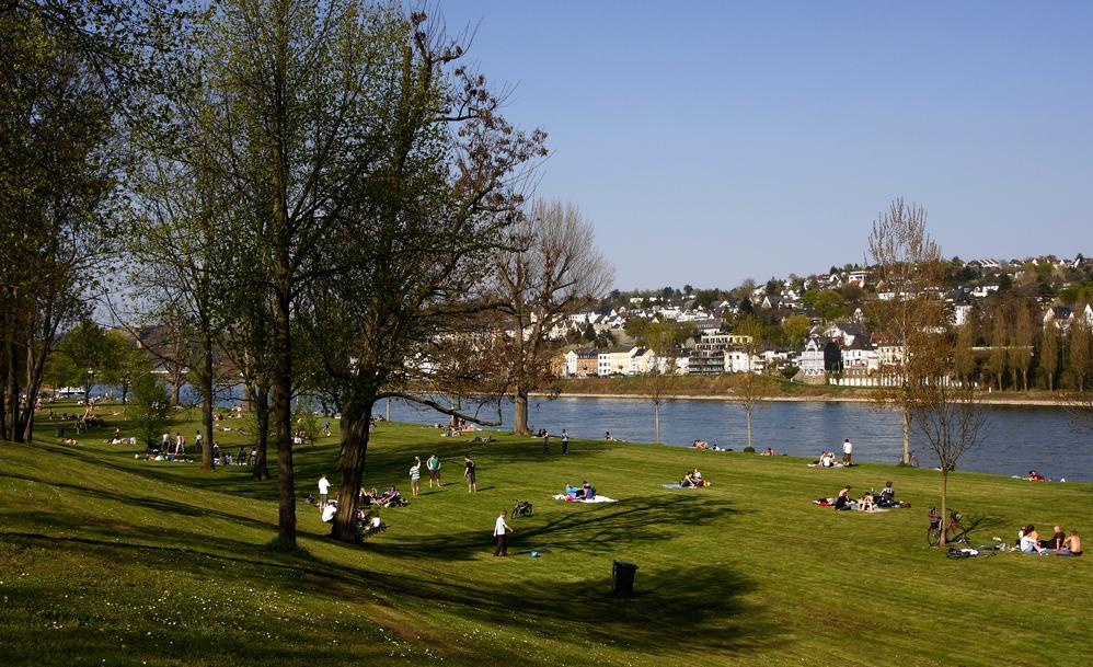 Rheinaue - Koblenz