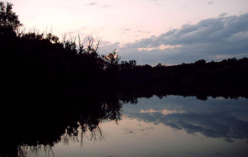 Rheinauen im Frühsommer
