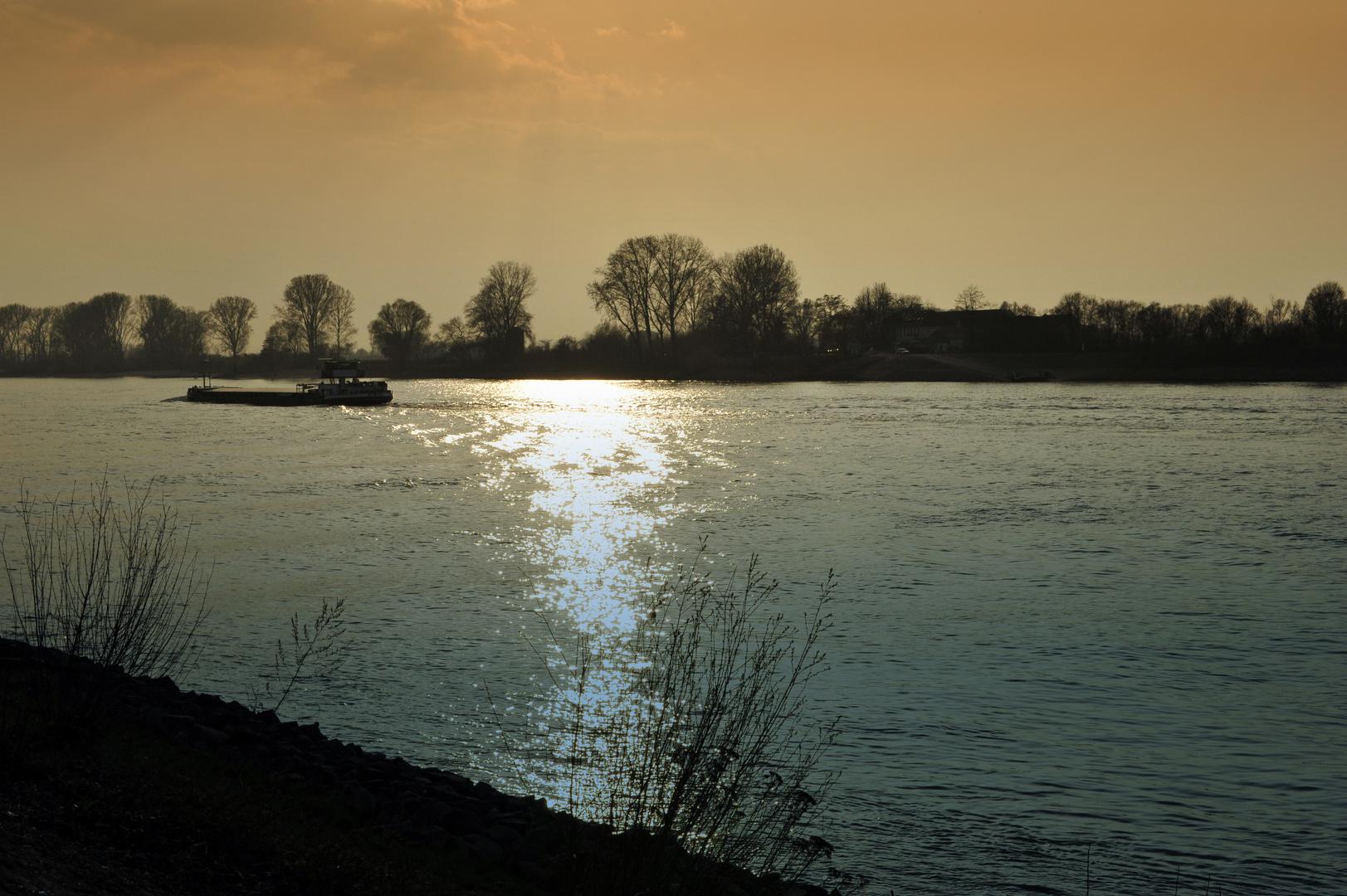 RheinColors