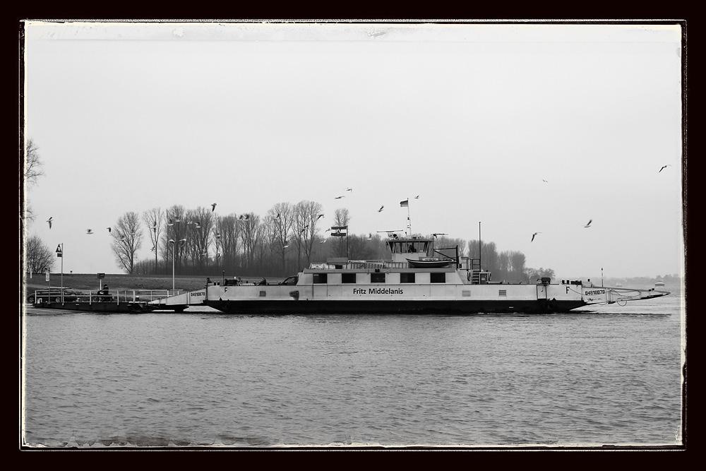 Rheinfähre bei Köln-Langel
