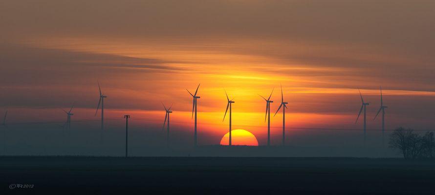 _Rheinhessen_Sunset_