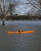 Rheinhochwasser 2o12