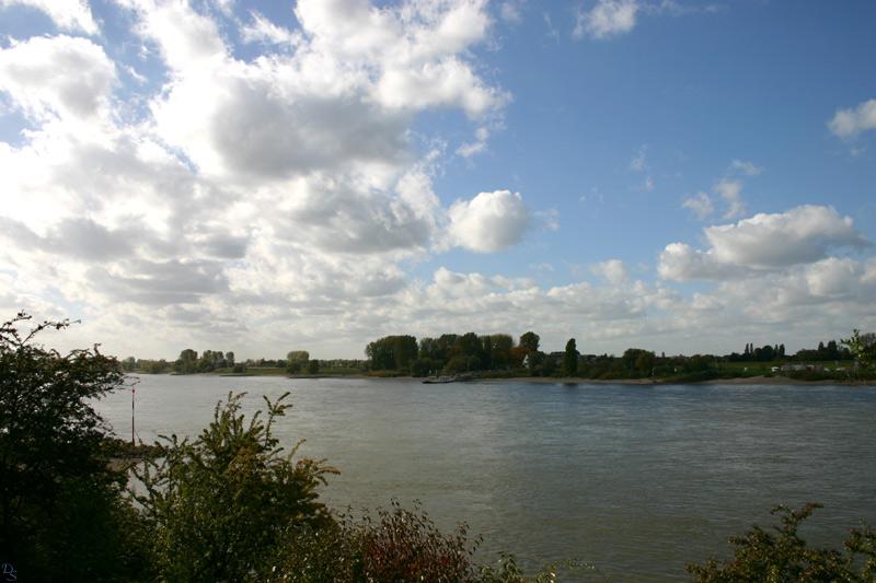Rheinimpressionen I.